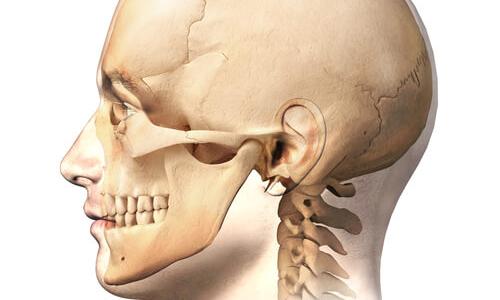 Kurs twarzoczaszka i terapia stawów skroniowo żuchwowych